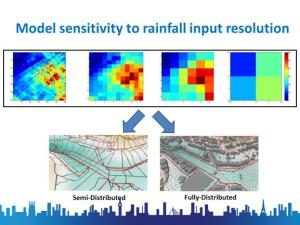 Model sensitivity to rainfall input resolution